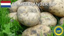 De Meerlander IGP - Paesi Bassi