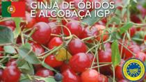 Ginja de Óbidos e Alcobaça IGP - Portogallo