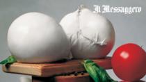 Mozzarella di Bufala Campana DOP - i 40 anni di un