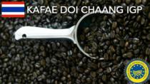 Kafae Doi Chaang IGP - Thailandia