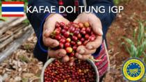 Kafae Doi Tung IGP - Thailandia