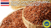 Khao Sangyod Muang Phatthalung IGP - Thailandia