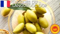 Lucques du Languedoc DOP - Francia