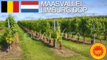Maasvallei Limburg DOP - Belgio e Paesi Bassi