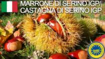 Marrone di Serino IGP - Italia