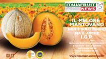 Melone Mantovano IGP: successo dopo la certificazione