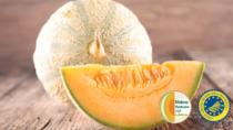Melone Mantovano IGP, la nuova campagna di comunicazione entra nel vivo