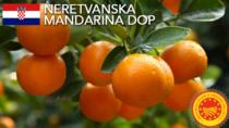 Neretvanska Mandarina DOP - Croazia