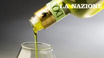 Consorzio Olio DOP Chianti Classico, Gionni Pruneti: «Quest