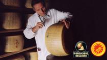 Parmigiano Reggiano DOP a CIBÒ.So good!