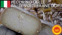 Pecorino delle Balze Volterrane DOP - Italia