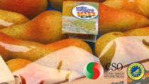 Pera IGP dell'Emilia Romagna, al via un programma di rilancio per promuovere un'eccellenza regionale