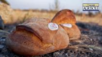 Pane di Altamura DOP, crescono produzione e quote di mercato
