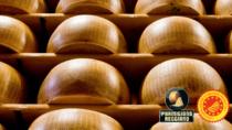 Il Consorzio Parmigiano Reggiano a Bologna dal 27 al 29 settembre con degustazioni e percorso educativo
