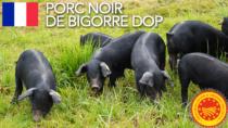 Porc Noir de Bigorre DOP - Francia