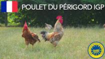 Poulet du Périgord IGP - Francia