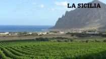 Il Consorzio di Tutela vini DOC Sicilia partito alla conquista della Cina