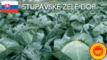 Stupavské Zelé DOP - Slovacchia