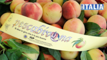 Sicilia DOP IGP: pesche, uva e arance: tonda è meglio...
