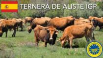 Ternera de Aliste IGP - Spagna
