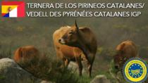Ternera de los Pirineos Catalanes IGP - Spagna/Francia