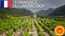 Terrasses du Larzac DOP - Francia