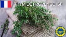 Thym de Provence IGP - Francia