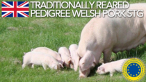 Traditionally Reared Pedigree Welsh Pork STG - Regno Unito