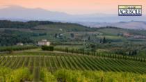 Svolta sostenibile per il Chianti Colli Fiorentini DOP