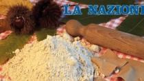 Vespa-killer fa strage di castagne. A rischio la produzione di farina Dop.