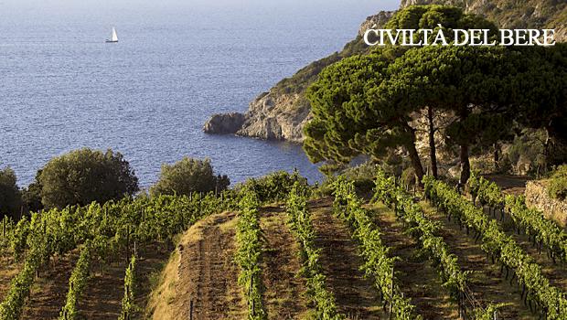 La nuova strategia del Consorzio vini Maremma Toscana Doc passa per la modifica del disciplinare