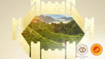 Colline del Conegliano e Valdobbiadene: un libro dopo il riconoscimento Unesco