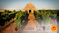 Consorzi del vino pugliesi: basta con lo scippo del primitivo
