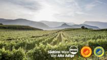 Il Consorzio Vini Alto Adige risponde al covid-19 riducendo le rese per valorizzare territorio e viticoltori