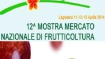 """Tre giorni di eventi con """"Fruttinfriore"""""""