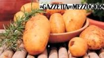 Patata novella di Galatina in protezione transitoria
