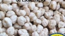 Garbanzo de Escacena IGP- Spagna