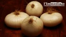 La Cipolla Bianca di Margherita, Foggia festeggia l