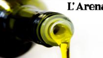 Olio Veneto DOP: cresce la produzione in controtendenza rispetto la media nazionale