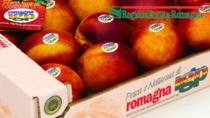 Consorzio Pesca e Nettarina di Romagna IGP e Ferrero insieme sul mercato nazionale