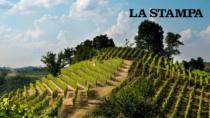 Roero Days a Bologna, due giorni di festa per il vino di confine