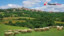Nasce #RET: Storie di Resilienza Enogastronomica Toscana