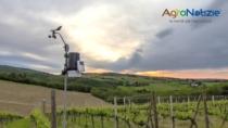 Franciacorta DOP, la viticoltura digitale alla base di una agricoltura sostenibile