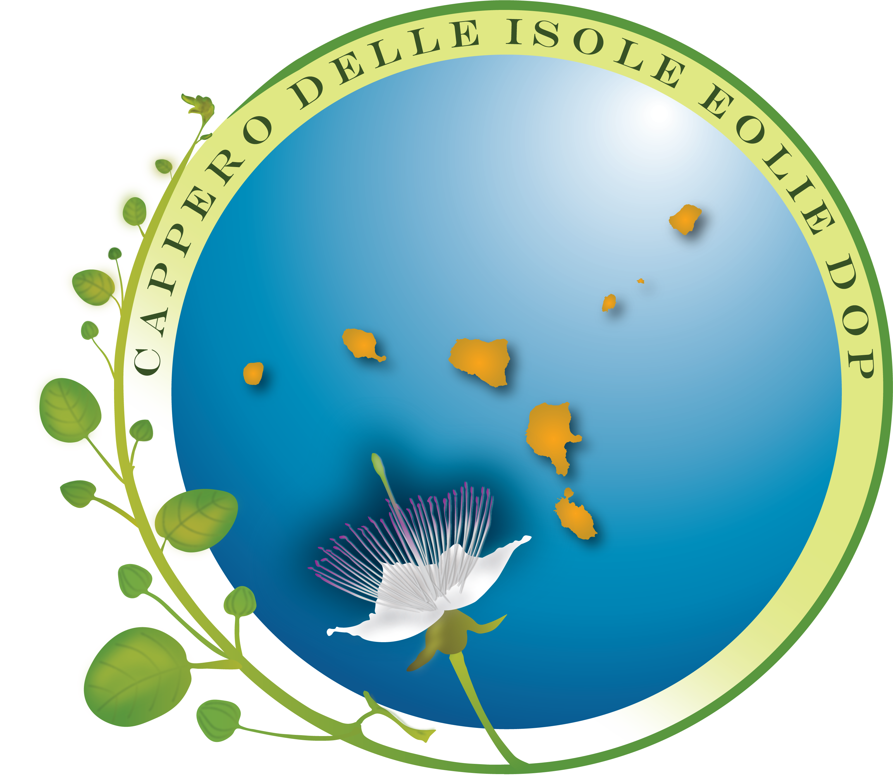 Cappero delle Isole Eolie DOP