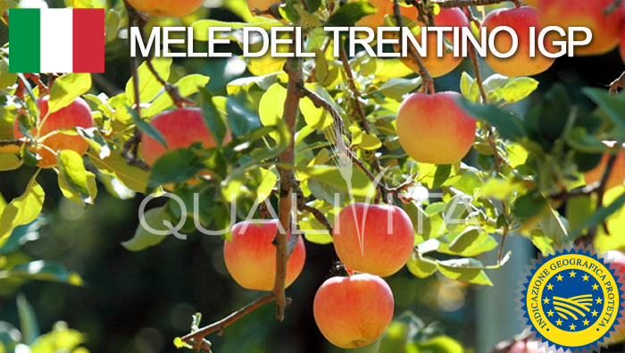 Mele del Trentino IGP - Italia