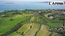 Garda DOP, un progetto a sostegno della promozione turistica lacustre