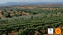 Maremma Toscana DOP: chef e produttori fanno squadra