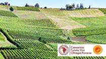 L'Oltrepò Pavese incontra il Giappone del vino partendo dal web