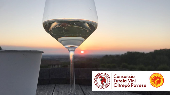 Consorzio Tutela Vini Oltrepò Pavese: approvati bilancio e nuovi obiettivi