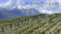 Consorzio Tutela Vini d'Abruzzo: proposta di blocage e riduzione delle rese del 15%